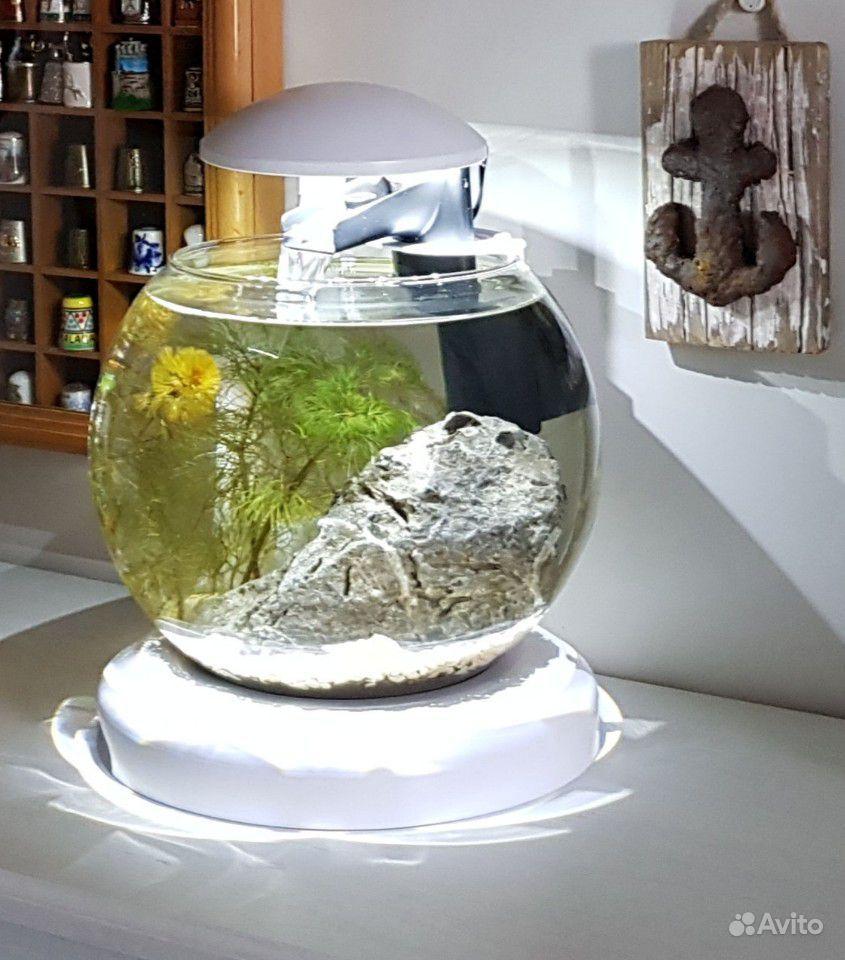 Очень красивый аквариум