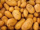 Домашний картофель