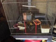 Продаю большую клетку для попугая