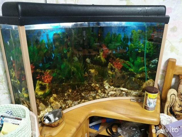 Aquarium corner