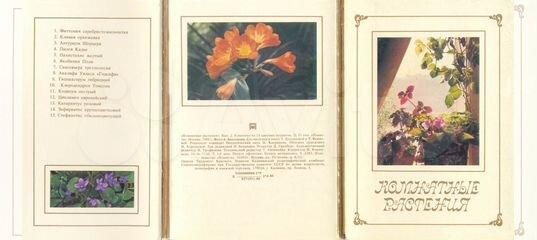 Цвета плексигласа