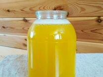 Кедровое масло, 1 литр